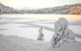 Wintermüsli